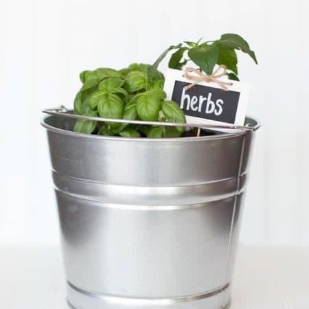 Easy DIY bucket herb garden. Stylish, practical, and portable!
