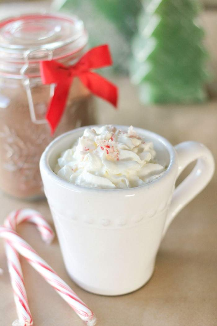 Homemade hot chocolate that's sugar-free! Mix up a big batch and store in the pantry, then just add milk!