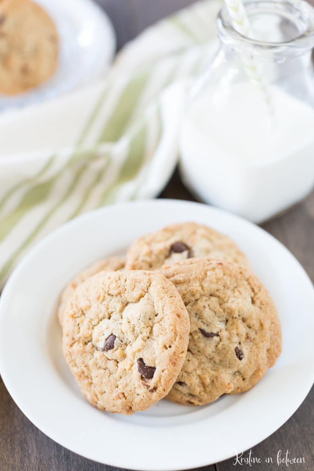 You'll love these easy chocolate chip coconut cookies that you can make in one-bowl and in under 30 minutes!
