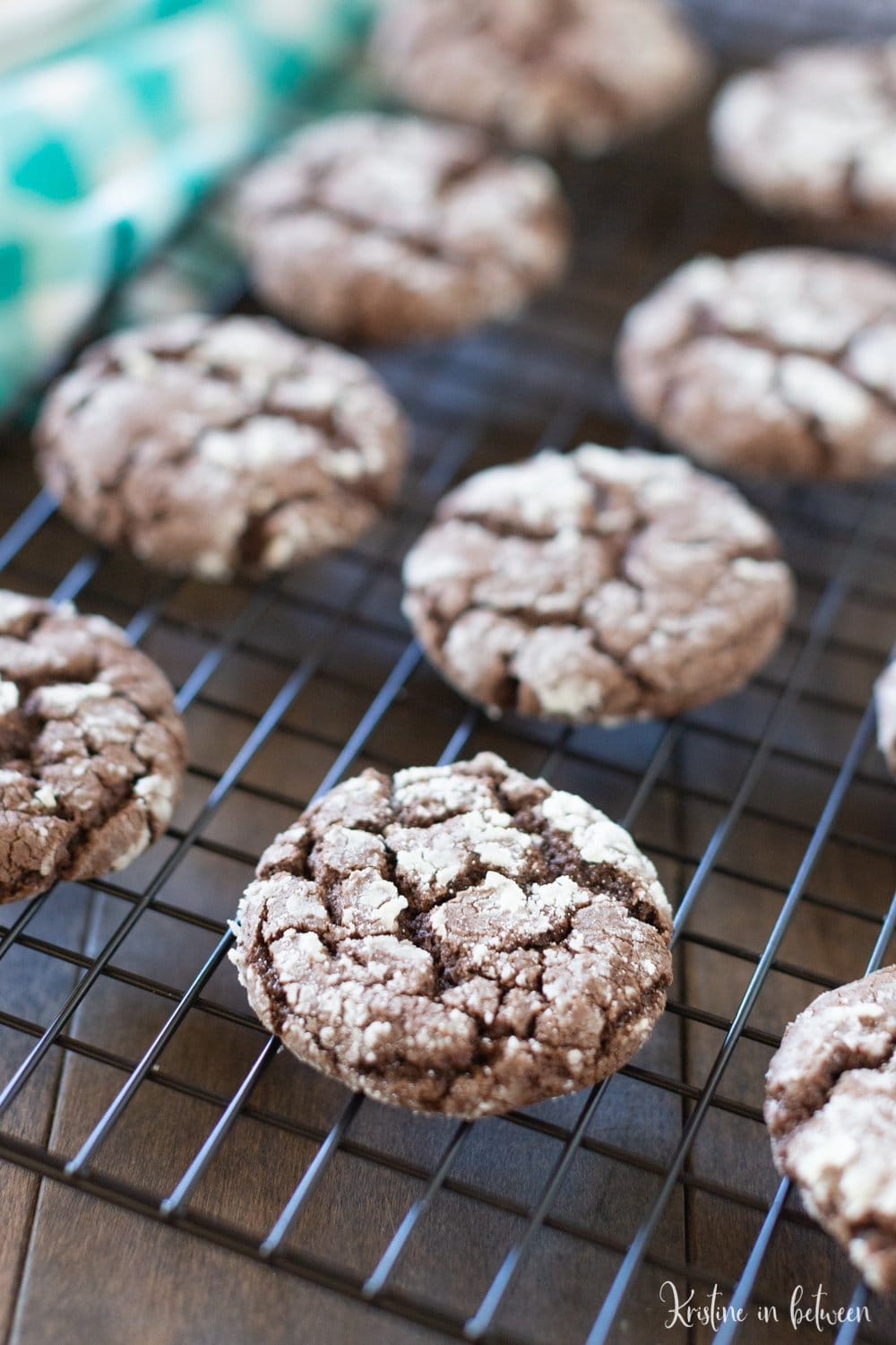 You'll love these super easy one-bowl chocolate crinkle cookies! They're easy to make and are absolutely delicious!